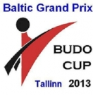 budo-cup-2013