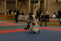 Budo Cup 2012